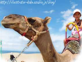 砂丘のラクダ